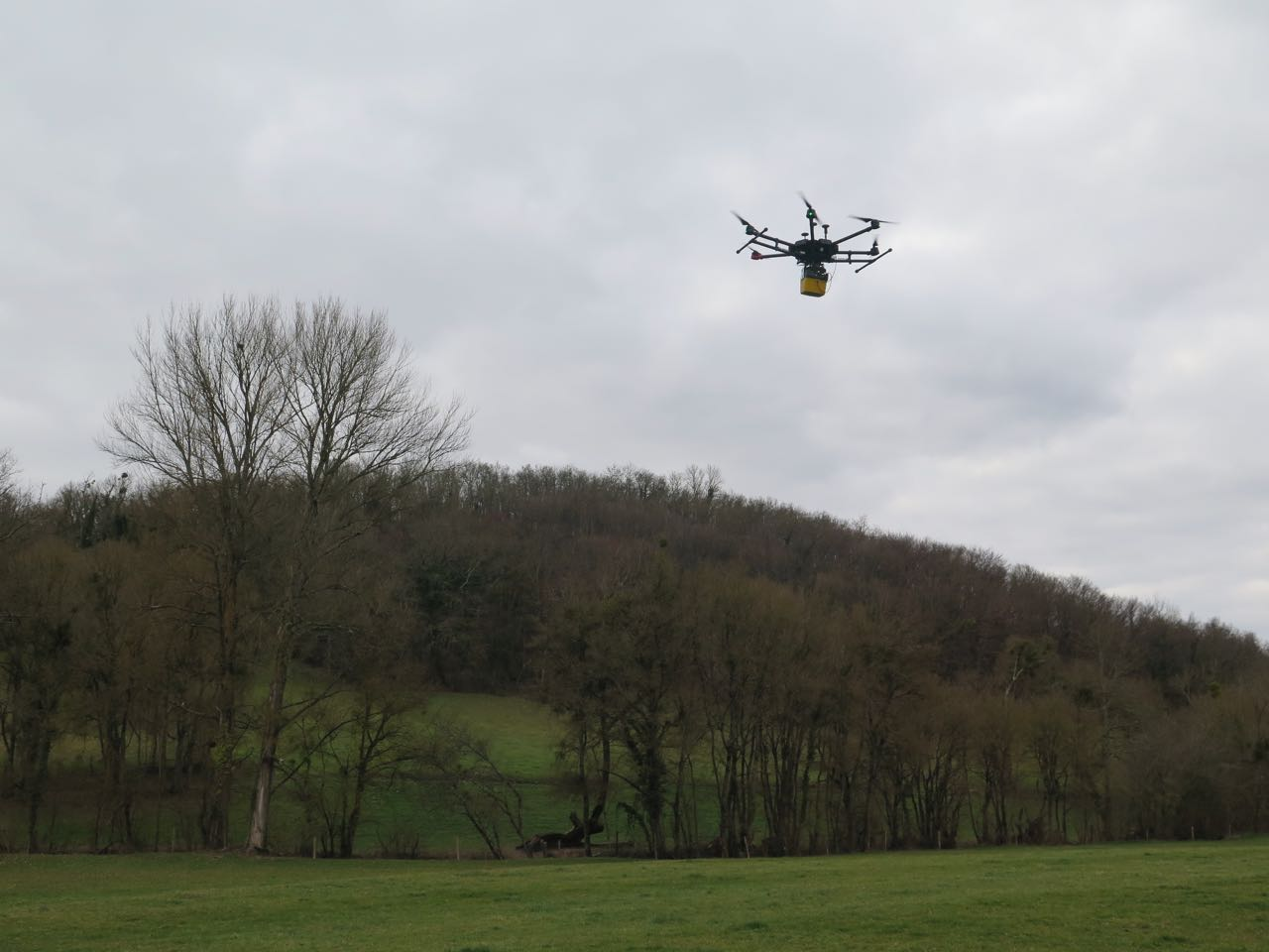 UAV LiDAR mapping under forest - YellowScan Mapper 2 - L'Escalère archaeological site - 2