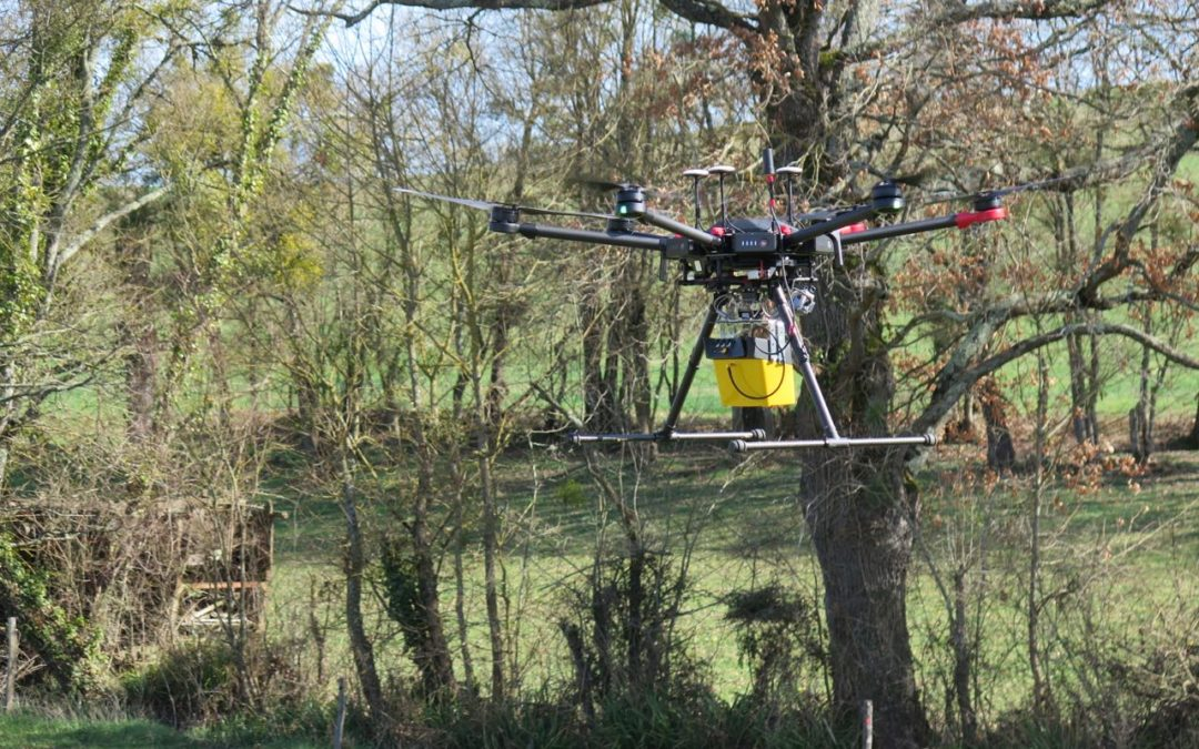 UAV LiDAR mapping under forest to find Iron Age Roman archaeological remains in South of France